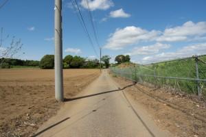 この道を奥まで進んだところに門があります